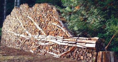 Buy or Build Firewood Storage Racks