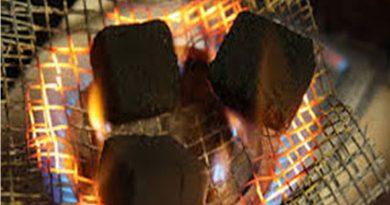 Corn Furnace as Alternative Heating