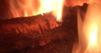 coal stoves buying guide